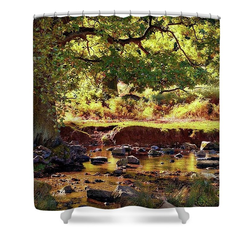 Linvalley Shower Curtain featuring the photograph The River Lin , Bradgate Park by John Edwards
