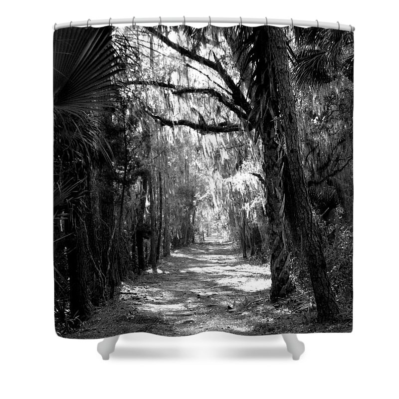 Trees Shower Curtain featuring the photograph The Road Less Traveled by J M Farris Photography
