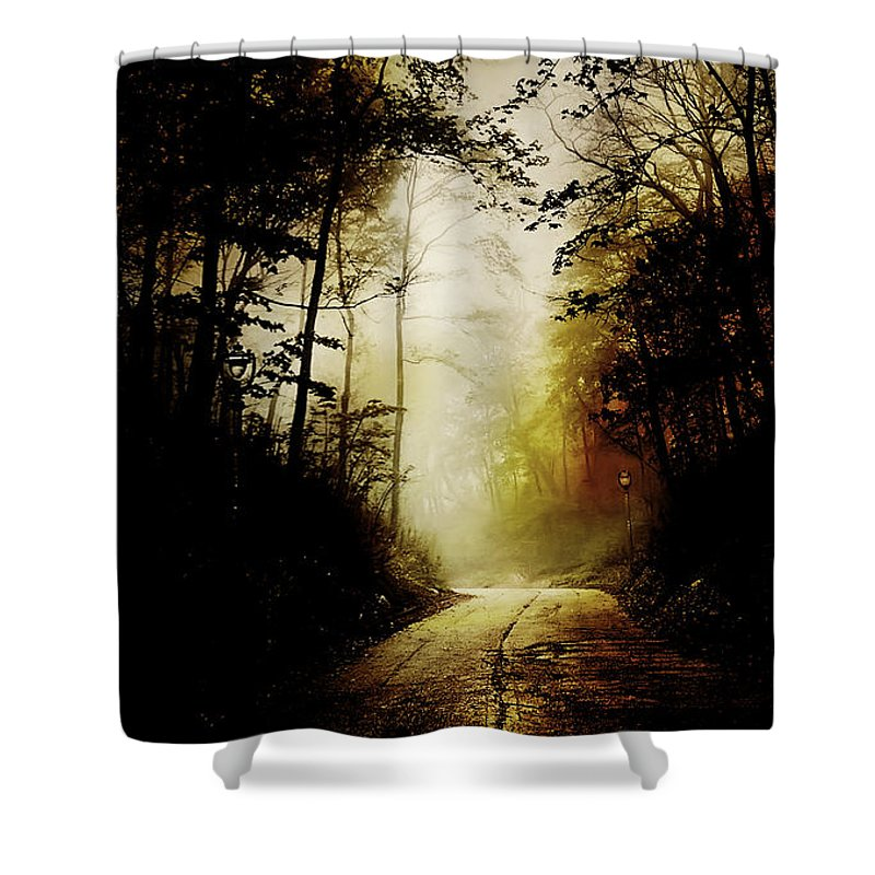 Abandoned Shower Curtain featuring the photograph The Road To Hell Take 2 by Scott Norris