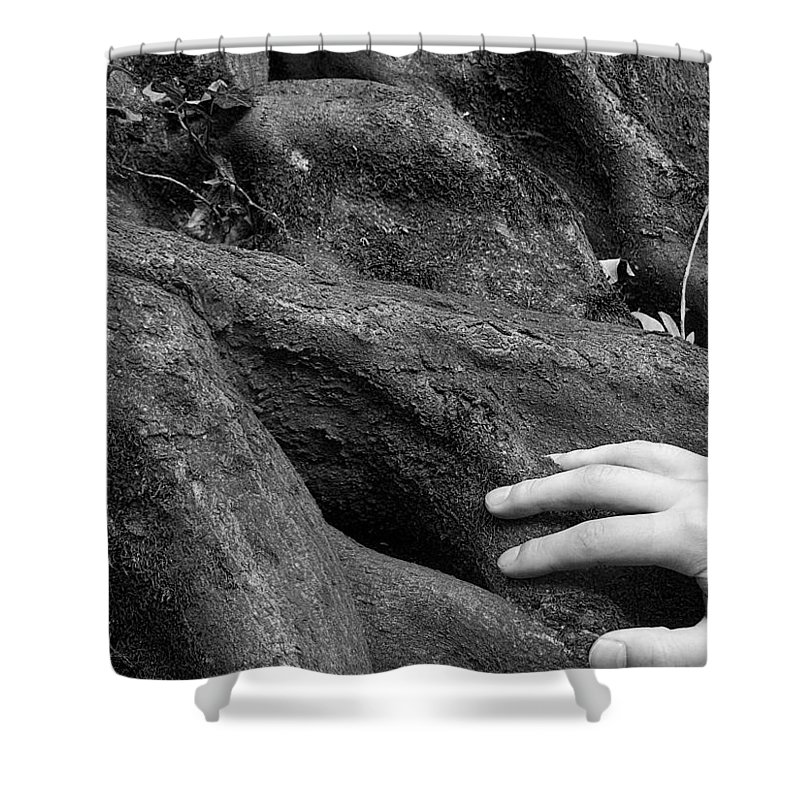 Nature Shower Curtain featuring the photograph The Roots by Daniel Csoka