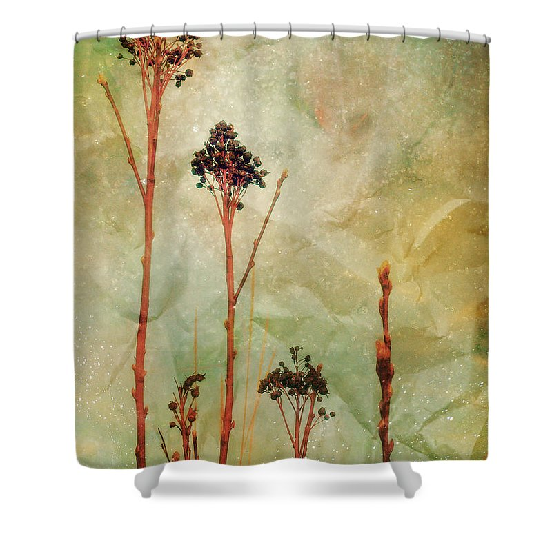 Weeds Shower Curtain featuring the photograph The Simple Things by Tara Turner