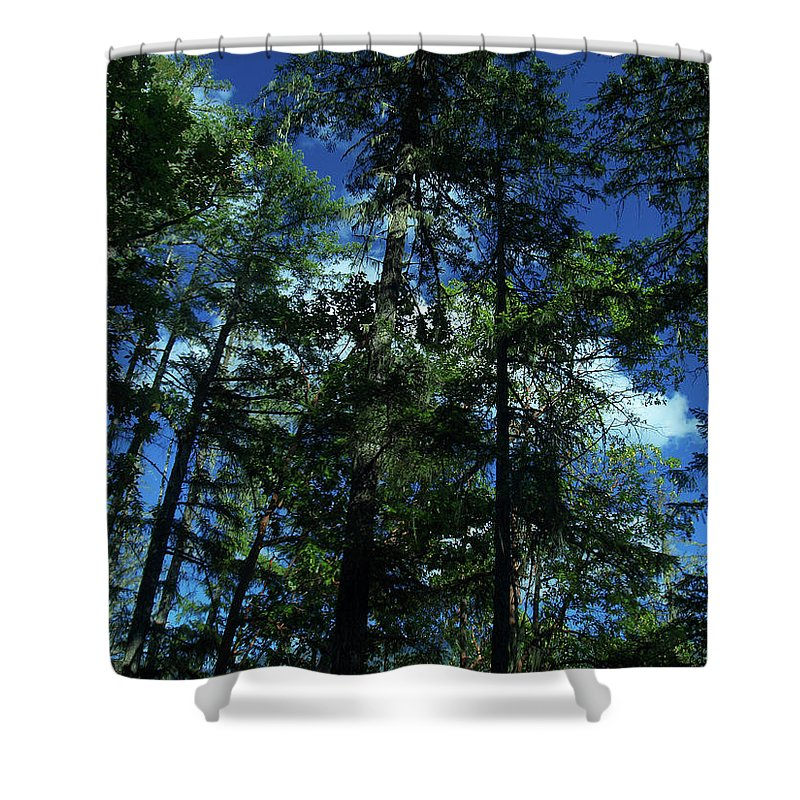 Blue Shower Curtain featuring the photograph The Skyline Of Susan Creek Indian Mounds by Teri Schuster