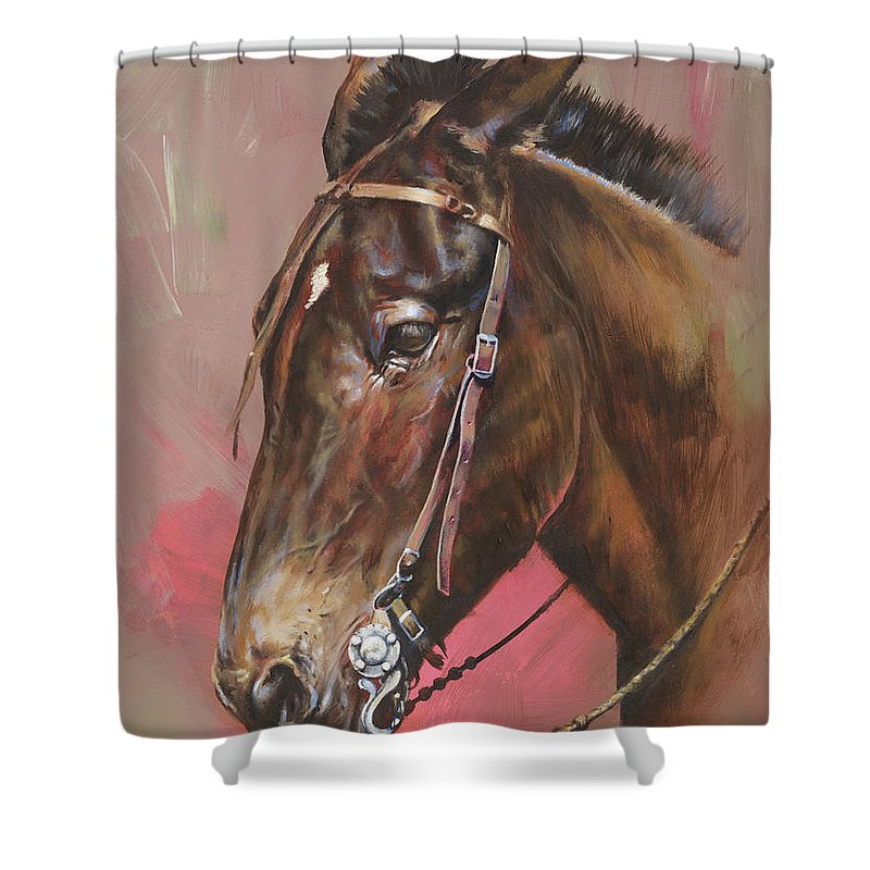 Mules Shower Curtain Featuring The Painting Spanish Mule By Mia DeLode