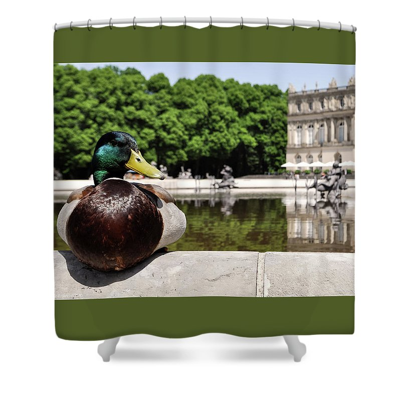 Duck Shower Curtain featuring the photograph The Stately Duck by Micah Campbell