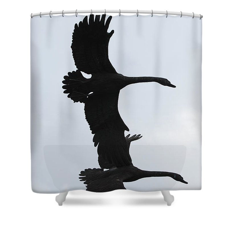 Sky Shower Curtain featuring the photograph The Stone Birds by Rob Hans