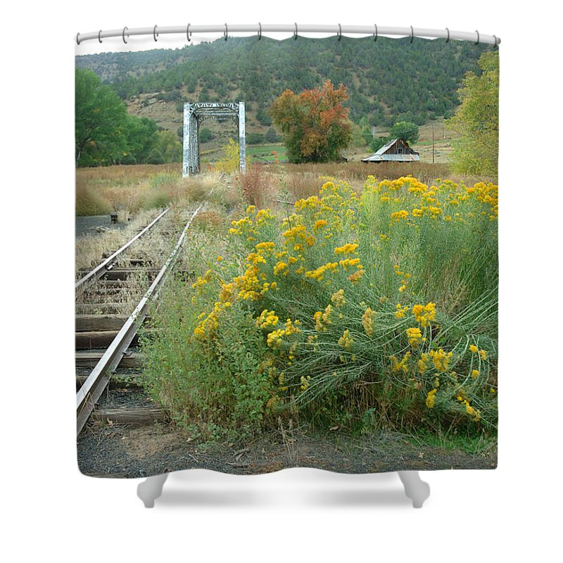 Train Shower Curtain featuring the photograph The Tracks At Pagosa Junction by Jerry McElroy