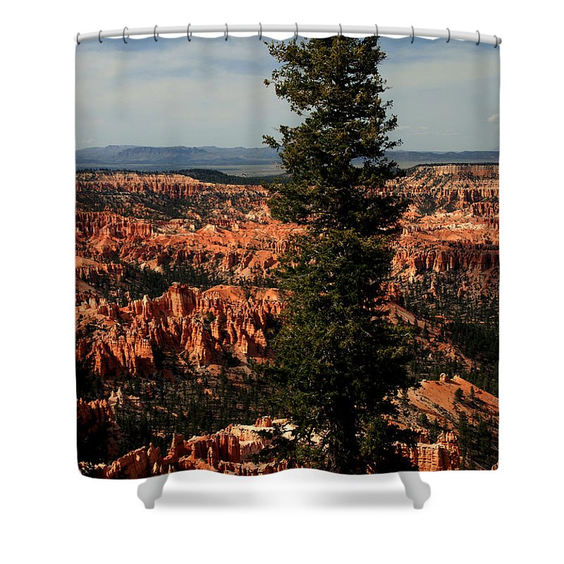 Bryce Canyon Shower Curtain featuring the photograph The Tree In Bryce Canyon by Susanne Van Hulst