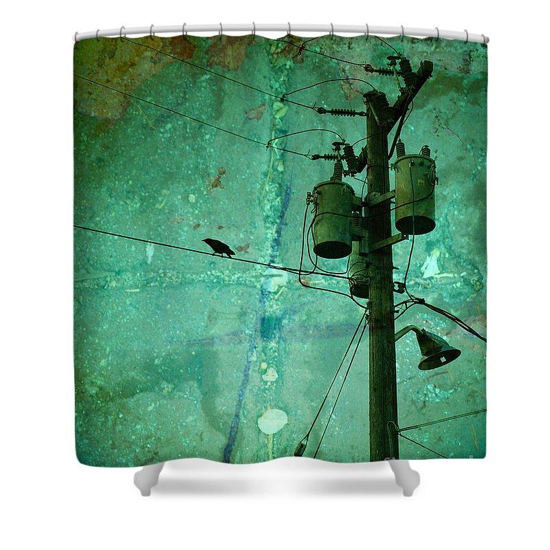 Urban Shower Curtain featuring the photograph The Urban Crow by Tara Turner
