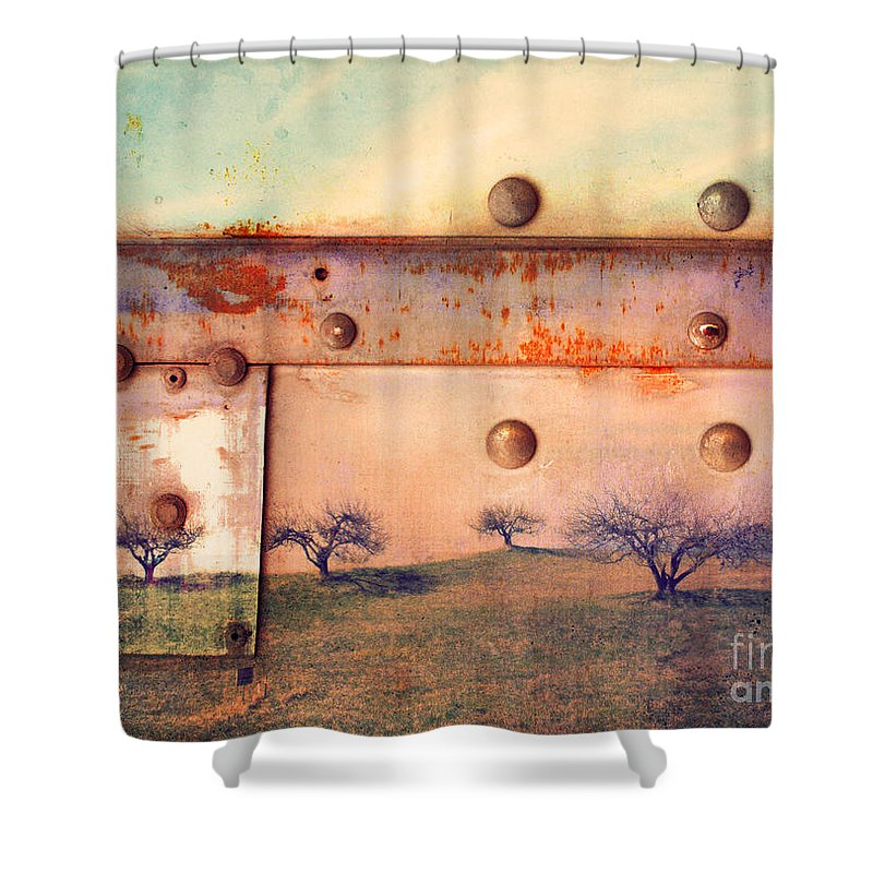 Trees Shower Curtain featuring the photograph The Urban Trees by Tara Turner