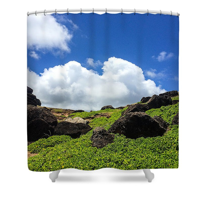 Hawaii Shower Curtain featuring the photograph The Valley by William Sikora
