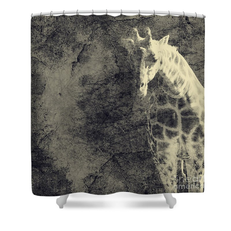 Dipasquale Shower Curtain featuring the photograph ...the Vast Expanses Of The Earth by Dana DiPasquale