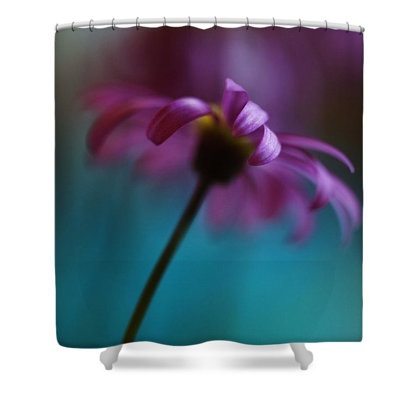 Tags: Shower Curtain featuring the photograph The View Above by Kym Clarke