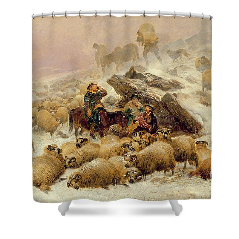 Sheep Shower Curtain featuring the painting The Warmth Of A Wee Dram by TS Cooper