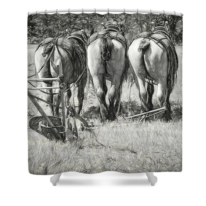 Alicegipsonphotographs Shower Curtain featuring the photograph They Wait by Alice Gipson