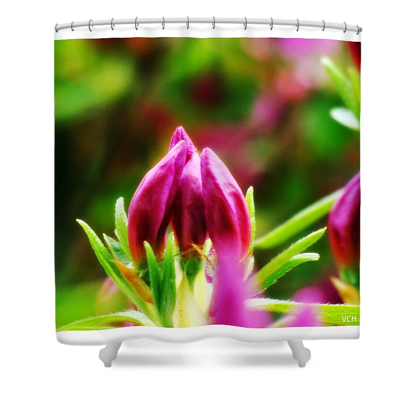 Bud Shower Curtain featuring the photograph This Bud's For You by Veronica Henson