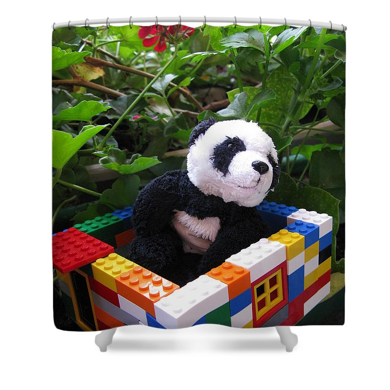 Baby Panda Shower Curtain featuring the photograph This House Is Too Small For Me by Ausra Huntington nee Paulauskaite
