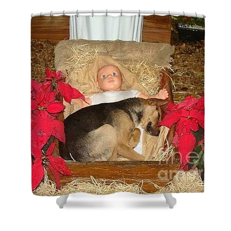 Dog Shower Curtain featuring the photograph This Shepherd Keeping His Watch by Carol Wisniewski