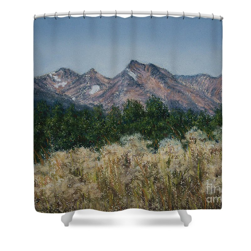 Canada Shower Curtain featuring the painting Thistledown In The Valley by Stanza Widen
