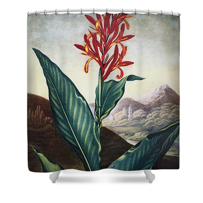 1804 Shower Curtain featuring the photograph Thornton: Indian Reed by Granger