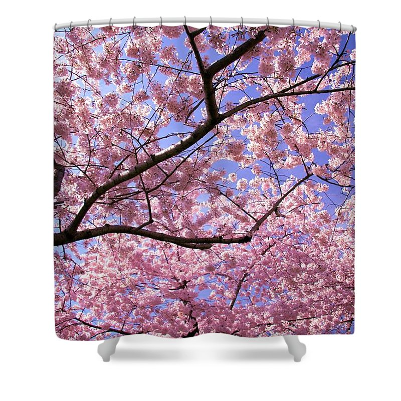 Landscape Shower Curtain featuring the photograph Thoughts by Mitch Cat