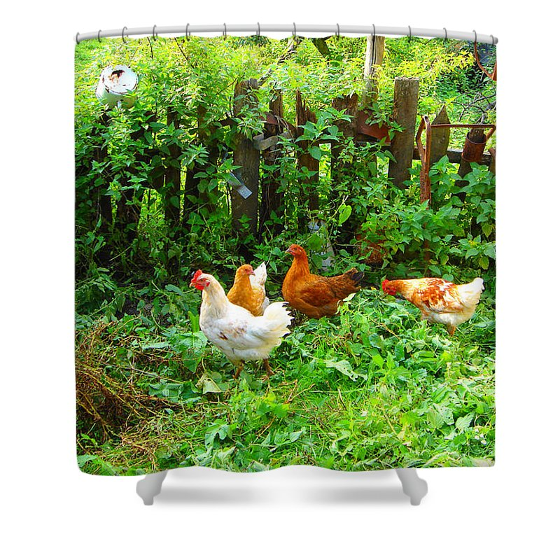 Three Shower Curtain featuring the photograph Three Kokas Full Colour Photograph by Marko Mitic