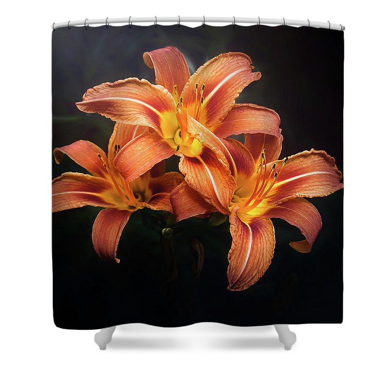 Lily Shower Curtain featuring the photograph Three Lilies by Scott Norris