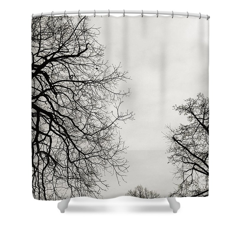 Moody Gardens Shower Curtains