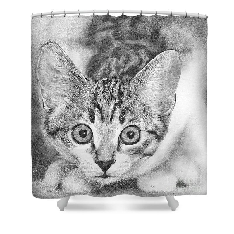 Cat Shower Curtain featuring the drawing Tiddles by Karen Townsend