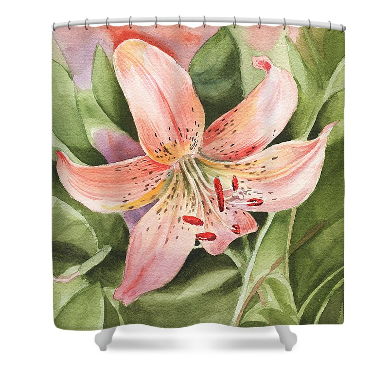 Day Lilies Shower Curtains