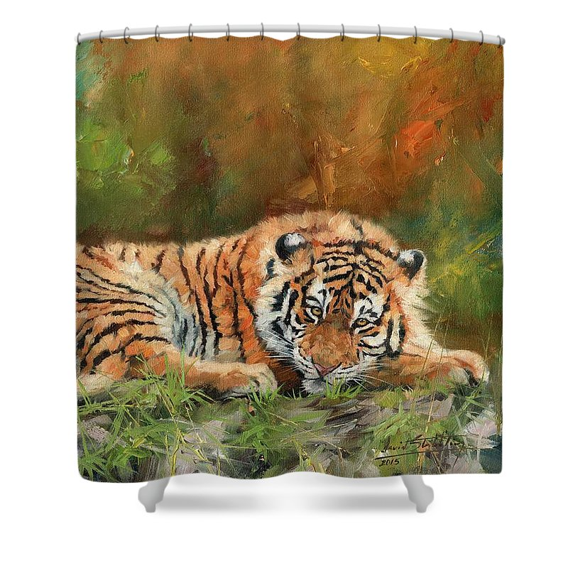 Tiger Shower Curtain featuring the painting Tiger Repose by David Stribbling