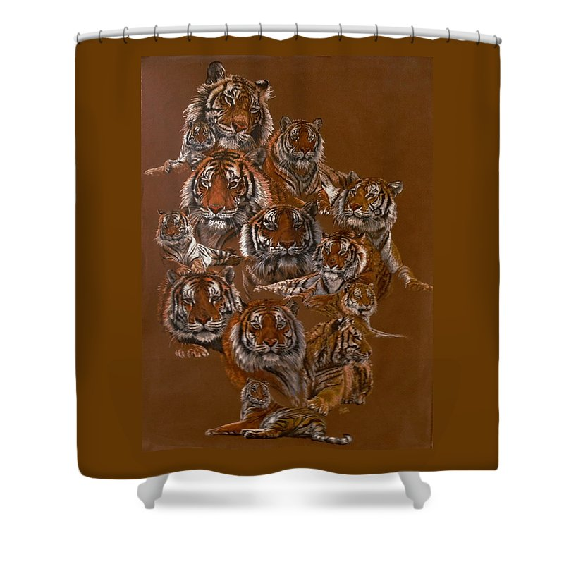 Tiger Shower Curtain featuring the drawing Tigers of Noah's Lost Ark Sanctuary by Barbara Keith