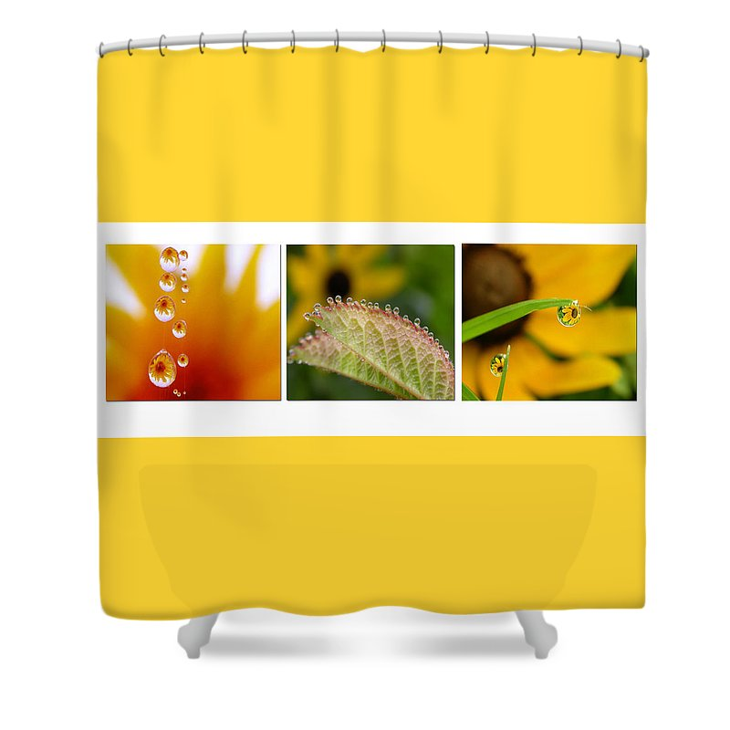 Dew Shower Curtain featuring the photograph Tiny Miracles by Linda Murphy