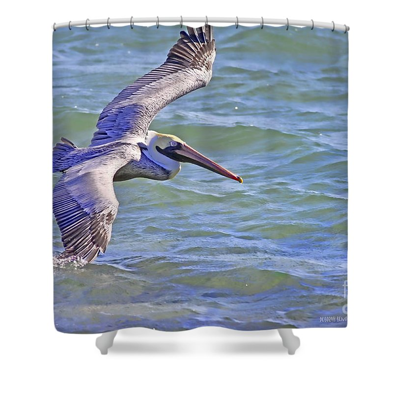 Pelican Shower Curtain featuring the photograph Tip Of The Wing by Deborah Benoit