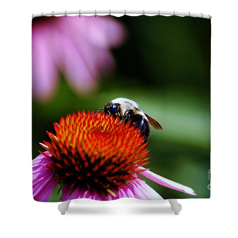 Clay Shower Curtain featuring the photograph To Bee Or Not To Bee by Clayton Bruster