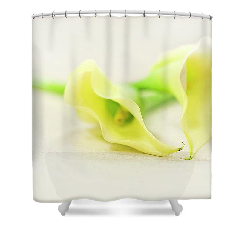 Calla Photographs Shower Curtains