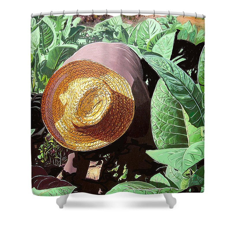Tobacco Shower Curtain featuring the painting Tobacco Picker by Jose Manuel Abraham
