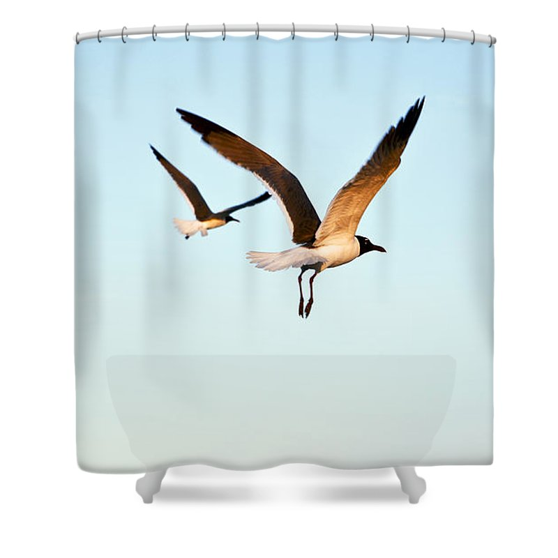 Two Shower Curtain featuring the photograph Together by Marilyn Hunt