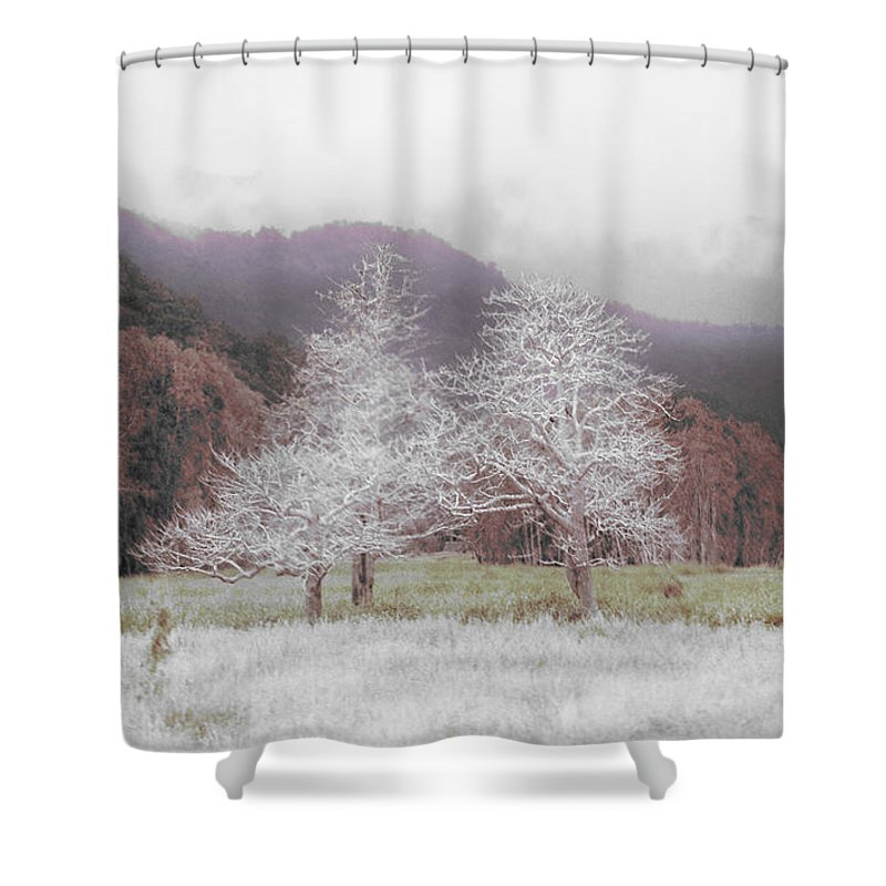 Landscape Shower Curtain featuring the photograph Together We Stand by Holly Kempe
