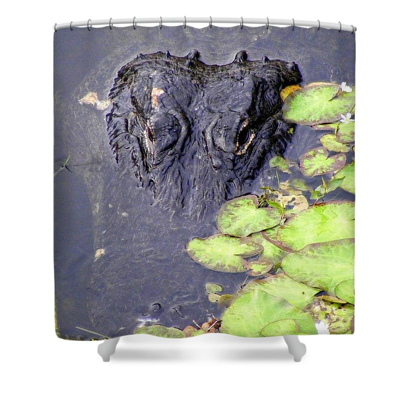 Swamp Shower Curtain featuring the photograph Too Close For Comfort by Ed Smith