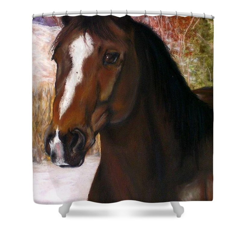 Horse Shower Curtain featuring the painting Toronto by Frances Marino