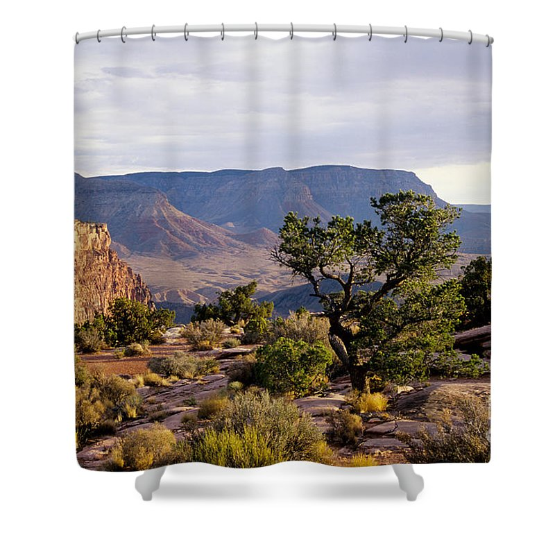 Arizona Shower Curtain featuring the photograph Toroweap by Kathy McClure