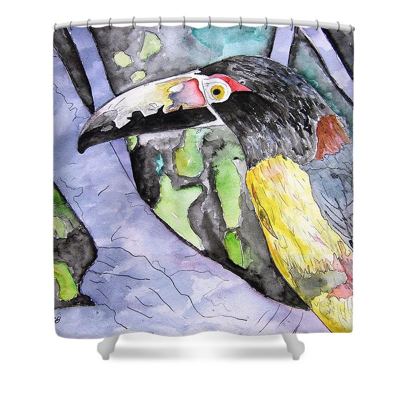 Touccan Shower Curtain featuring the painting Toucan Bird Tropical Painting Fine Modern Art Print by Derek Mccrea