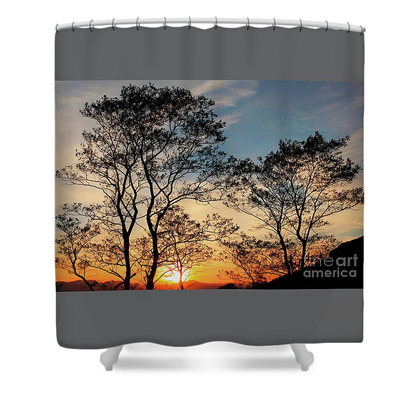 Nature Shower Curtain featuring the photograph Touch Of Light by Xabi Lobo