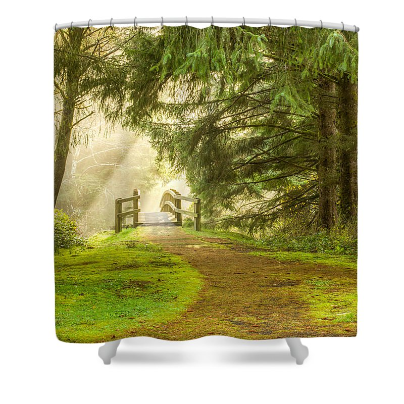 Landscape Shower Curtain featuring the photograph Towards The Light 0020 by Kristina Rinell