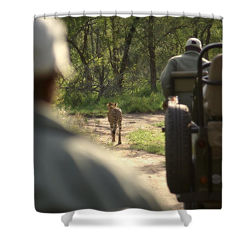 Cheetah Shower Curtain featuring the photograph Tracking by Robert Hunter