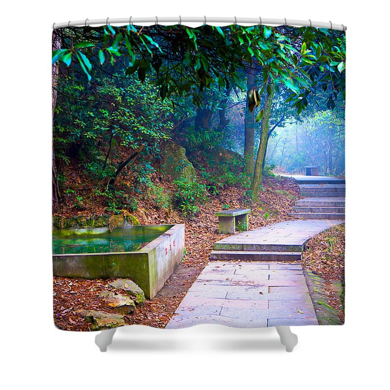 Trail Shower Curtain featuring the photograph Trail In Woods by James O Thompson