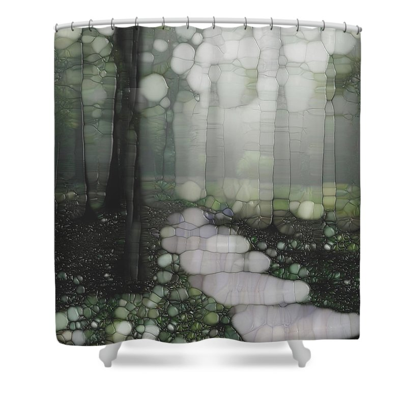 Forest Shower Curtain featuring the painting Trail Series 5 by Jack Zulli