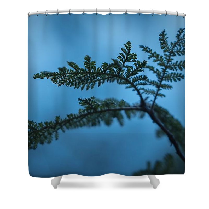 Landscape Shower Curtain featuring the photograph Trailside Foliage by Brian Redgrave