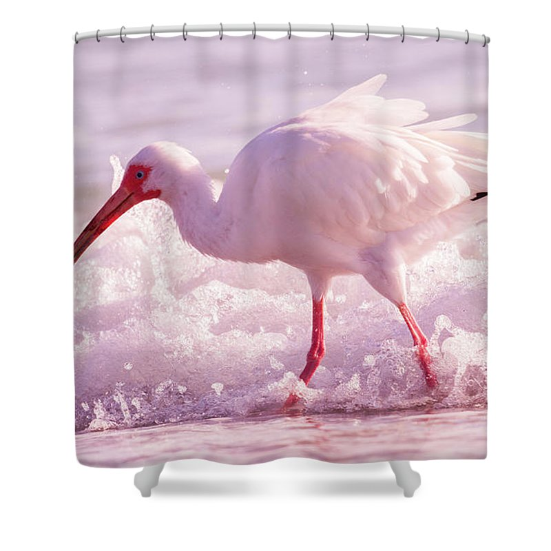 Ibis Shower Curtain featuring the photograph Tranquil Beauty Cortez Beach by Betsy Knapp