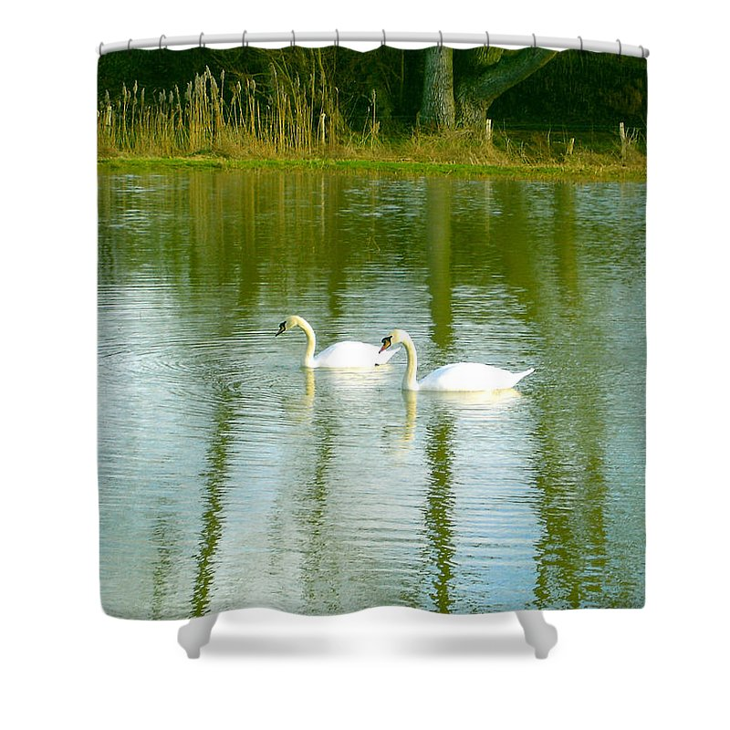 Swans Shower Curtain featuring the photograph Tranquil Reflection Swans by Susan Baker